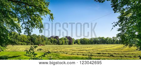 Country landscape with tracktor working the land