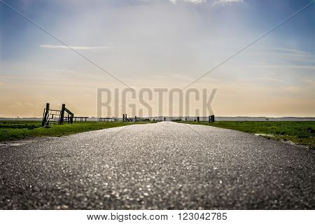 the road leading to beautiful sunlight in rural holland