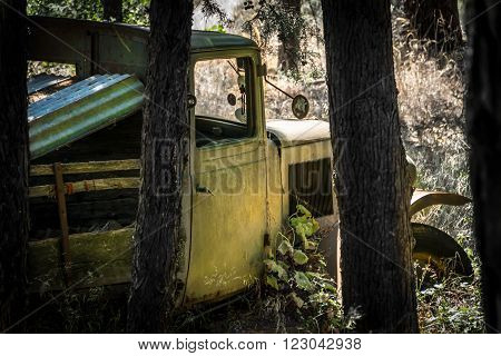 An old truck or classic car hidden in the woods