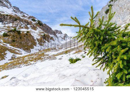 Ammergauer Hochplatte alps alpen bavaria tirol hiking