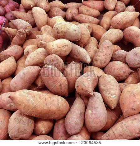 A closeup view of a group of Sweet Potatoes. Sweet Potatoes are rich in complex carbohydrates and dietary fiber.