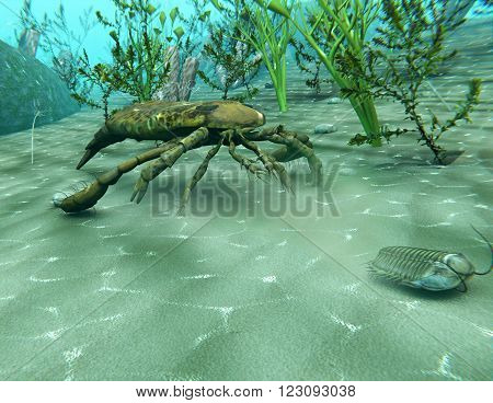 An 3D illustration of Eurypterus (Sea Scorpion) chasing a Trilobite in an underwater scene from the Ordovician Period (300 million years ago)