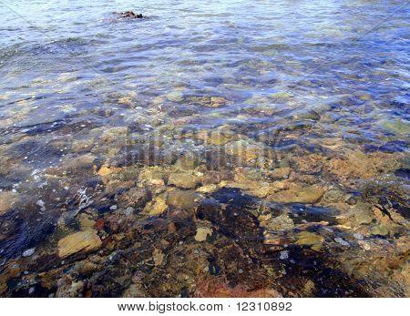 Coral reef rocks (close-up)
