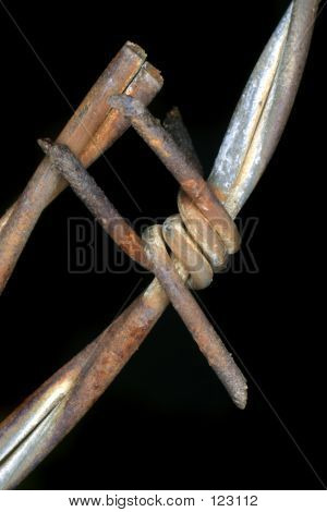 Barbed Wire 8