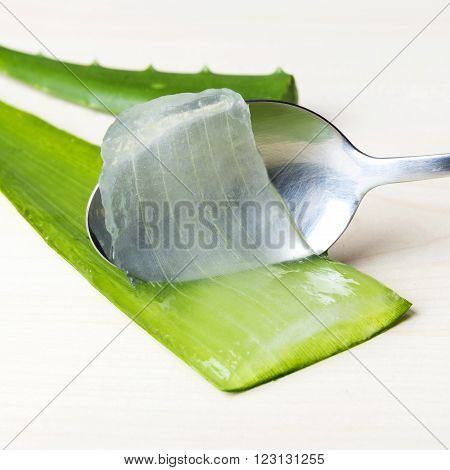 Aloe vera juice with fresh leaves, green plant