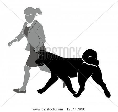 Handler and American Akita, girl and dog