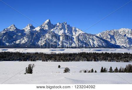Grand Tetons Mountain Range Peaks on a bright sunlit morning in Grand Teton National Park in Wyoming USA