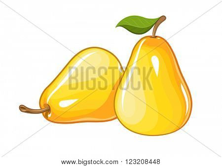 Juicy ripe pear. Vector illustration. Isolated white background. Transparent objects used for lights and shadows drawing