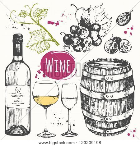 Vector illustration with wine barrel, wine glass, grapes, grape twig.  Classical alcoholic drink.