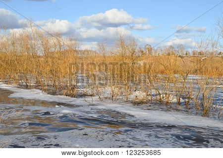 Spring landscape with a view of the flooded shore and clouds in the blue sky