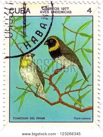 Cuba - Circa 1977: A Stamp Printed By Cuba Shows The Bird Cuban Grassquit - Tiaris Canorus, Stamp Is