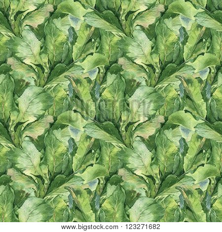 Watercolor colorful fresh summer pattern set with potherbs green leaves