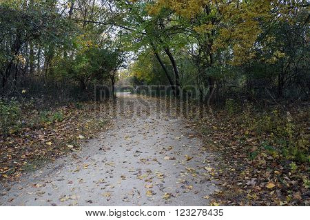 A foot path is available for visitors to the Lake Renwick Heron Rookery Nature Preserve in Plainfield, Illinois