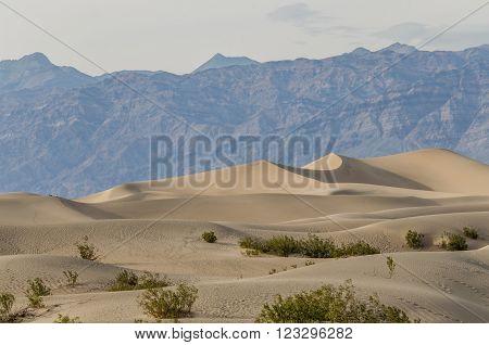Mesquite Dunes in Death Valley in California