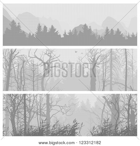 Wild forest background. Wild forest horizontal banners. Forest design template. landscape nature, wood natural panorama. Outdoor camping design template. Journey banner collection. Vector illustration