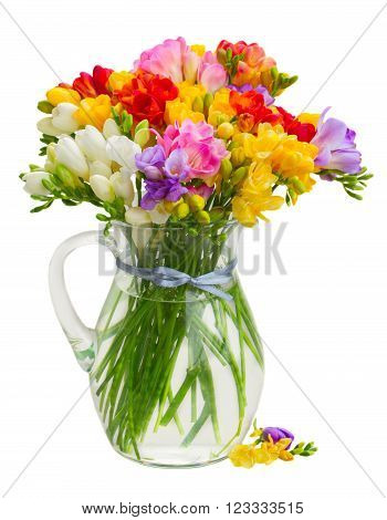 Posy of fresh freesia flowers in glass vase isolated on white background