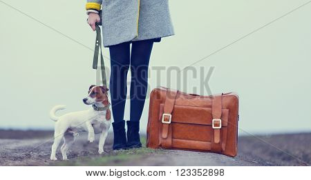 Young Woman With Suitcase And Dog Standing On The Road