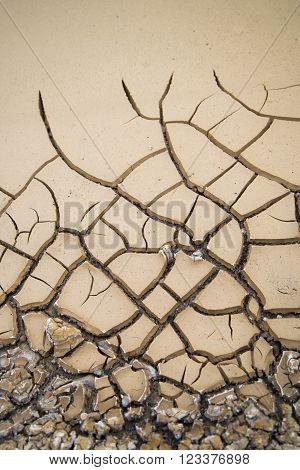 Mud cracks forming after heavy rain in Death Valley National Park
