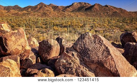 Hohokam Petroglyphs at Signal Hill in Saguaro National Park