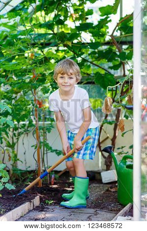Happy little kid boy watering plants and vegetables with can and working with garden hoe in greenhouse. Preschool child helping on sunny summer day. Family, garden, gardening, lifestyle