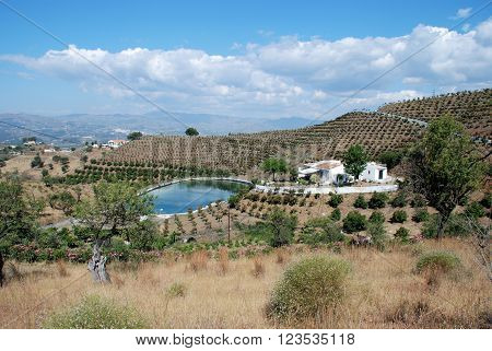 Country farm with its own water storage deposit in the Axarquia region Velez Malaga Costa del Sol Malaga Province Andalusia Spain Western Europe.
