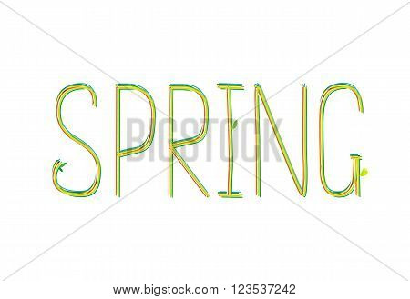 Spring word. Drawn lettering with leves. Vector illustration for seson design. Colorful label.