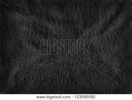 rough texture dark skin with wrinkles. background for text. poster