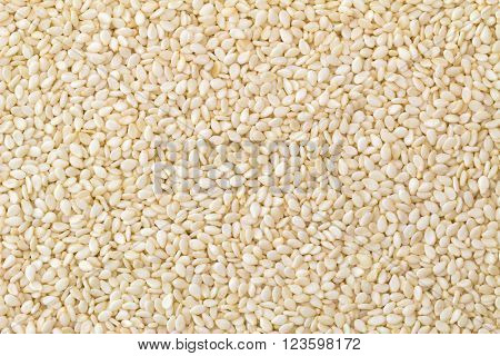 Closeup background texture photo of White sesame seeds with natural color