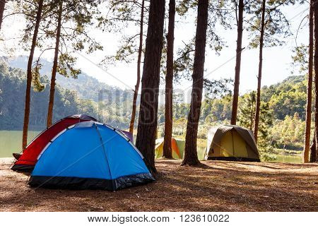 Tents of traveler in camping site near lake
