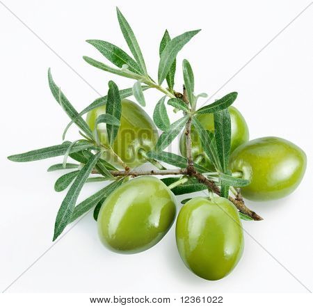 green olives with a branch on a white background