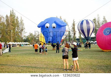 Animal Hot Air Balloon Flying