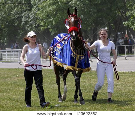 PYATIGORSK,RUSSIA - JUNE 05, 2011:Unknown grooms and jockeys output horses to race Derby prize in Pyatigorsk,Caucasus,Russia on June 052011.