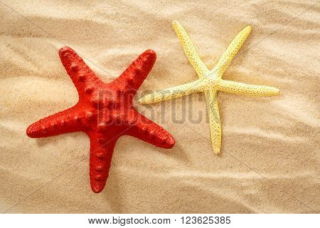 Decorative Sea Stars On The Sand