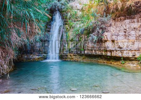Walk in the national park Ein Gedi, Israel. Beautiful waterfall and a small scenic lake with clear water.