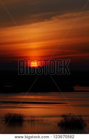 Sun rising over river Biebrza floodplain in Poland.