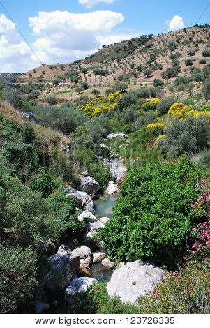 View of the Sabar river stream running through the mountains between Periana and Rio Gordo Costa del Sol Malaga Province Andalusia Spain Western Europe.