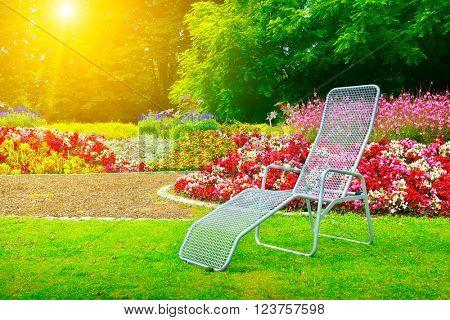 deckchair in park next flower bed at dawn