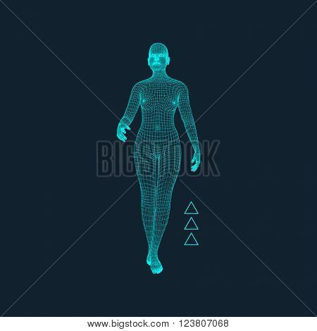 3D Model of Woman. Polygonal Design. Geometric Design. Business, Science and Technology Vector Illustration. 3d Polygonal Covering Skin. Human Polygon Body.