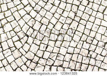 Stone paving texture / Abstract street background