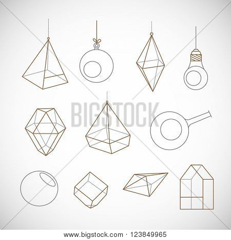 Empty terrariums for flowers and succulents. Vector. Isolated