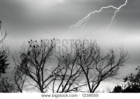 Stock Image Of Silver Storm