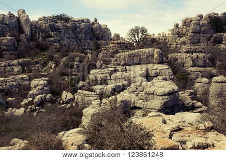 View Of Karst Rocks In El Torcal, Antequera. Spain.
