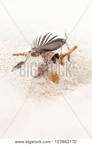 Feather, wooden twig, stone and grains of sand at the bright beach (copy space)