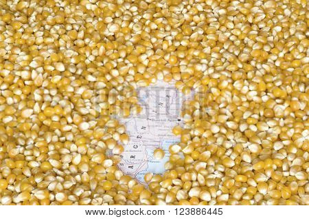 Geographical map of Argentina covered by a background of corn seeds. This nation is the one of the five main producers and exporters of maize. Horizontal image.