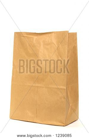 Brown Recycled Paper Grocery Bag over White