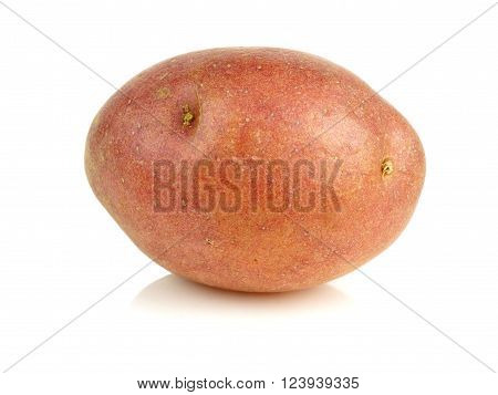 Single Small Red Potato Isolated On A White Background