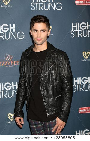 LOS ANGELES - MAR 29:  Max Ehrich at the High Strung premiere at the TCL Chinese 6 Theaters on March 29, 2016 in Los Angeles, CA