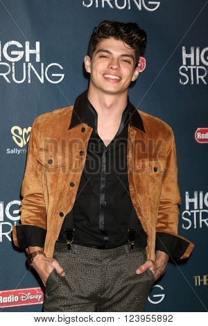LOS ANGELES - MAR 29:  Ian Eastwood at the High Strung premiere at the TCL Chinese 6 Theaters on March 29, 2016 in Los Angeles, CA