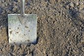 Soil preparation by digging with a garden spade. poster