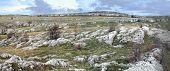 Panorama of Karabie plateau, Crimea, Ukraine poster